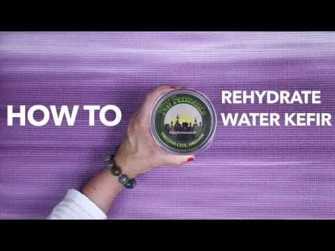 Quickie: Rehydrate Water Kefir Grains