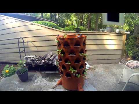 GardenTower 2 timelapse
