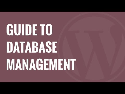 Beginner's Guide to WordPress Database Management with phpMyAdmin