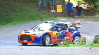 WRC Rallye Deutschland 2017 [HD] | MISTAKES, DRIFTS, ACTION & PURE SOUND