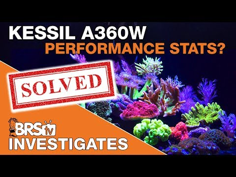 Discovering even more about the Kessil A360 Tuna Blue | BRStv Investigates
