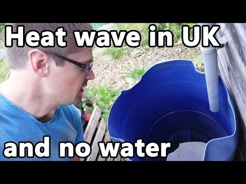 Heat wave in UK and no water on the allotment