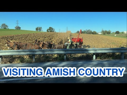 Visiting Amish Country (& Planting Plum Trees, Dealing w/Mt. Garbage)