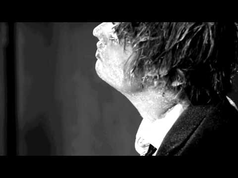 Peter Doherty - Flags of the Old Regime [official video]