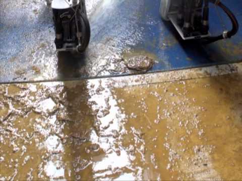 Urine Resistant Flooring | Resisting Urine Floor System