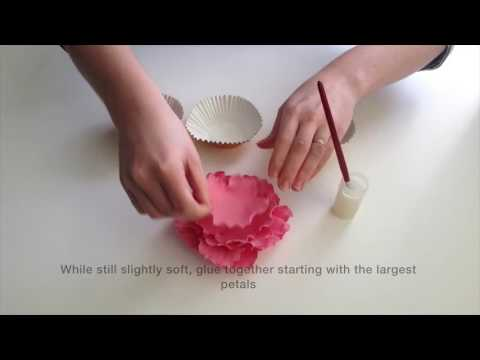 How to Make a Sugarcraft Peony Flower