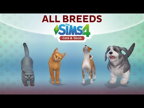 Overview of ALL BREEDS / The Sims 4 Cats & Dogs