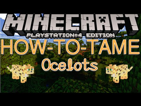 Minecraft PS4- How To Tame Ocelot! (HD-1080p)