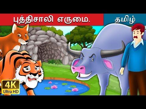 Xxx Mp4 புத்திசாலி எருமை Intelligent Buffalo In Tamil Fairy Tales In Tamil Tamil Fairy Tales 3gp Sex