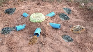 Awesome Quick Bird Trap Using Plastic Basket  And PVC - How to Make Bird Trap With Water