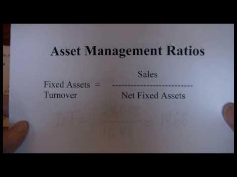 Financial Ratios Asset Management