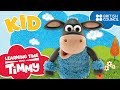 Meet Kid Learning Time With Timmy Cartoons For Kids