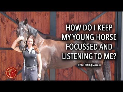 How Do I Keep My Young Horse Focussed and Listening To Me? - FearLESS Friday TV Ep 58