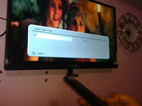 Watch Dual Audio Movies in TV
