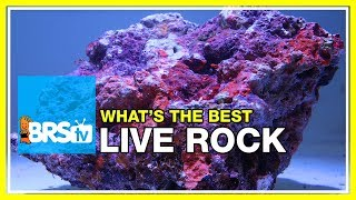 Week 10: What you may not have known about live rock   52 Weeks of Reefing