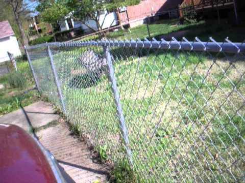Lansdowne backyard fence and weeds final