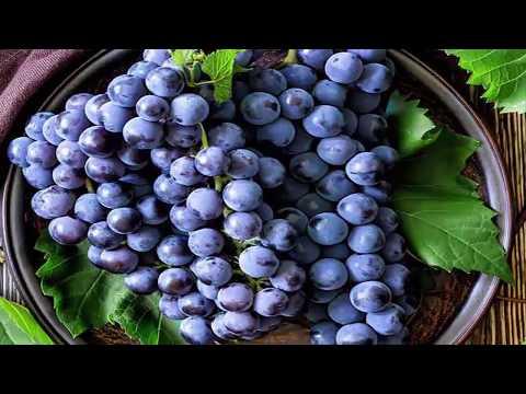 9 Amazing Black Grapes Benefits | Useful info