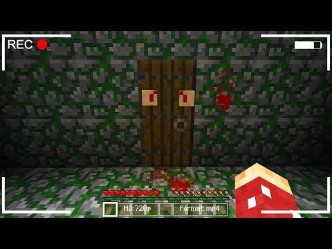 do not open this minecraft door...
