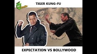 Tiger Kung-Fu: Expectation Vs Bollywood (Mithun's Worst Fight Scene Ever)