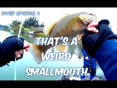 Fall fishing with FishingThePNW