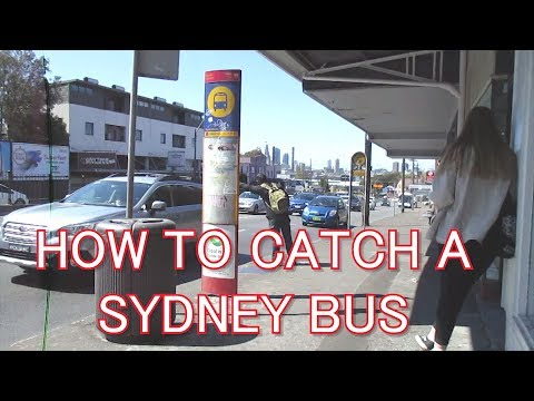 Sydney Buses: How to catch a bus - Opal card tap on/off