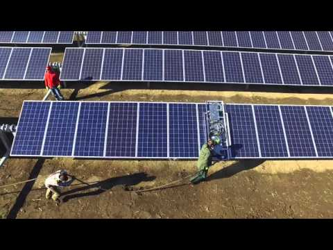 Clifford Mobile Solar Panel Cleaning