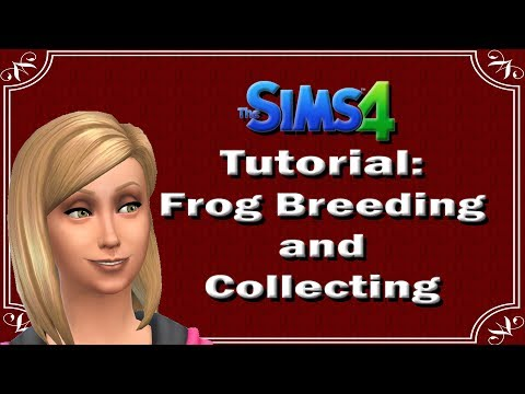The Sims 4: Tutorial 5: Frog Breeding and Collecting