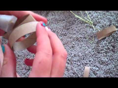 Homemade guinea pig toys!
