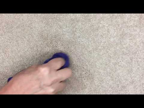 Lemon Essential Oil - Removing carpet stains without chemicals