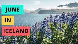 Download June in Iceland | ULTIMATE travel guide Video