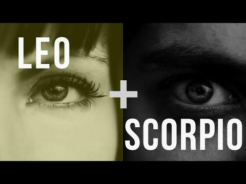 Leo & Scorpio: Love Compatibility