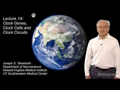 Joseph Takahashi (UT Southwestern/HHMI) Part 1A: Circadian Clocks: Clock Genes, Cells and Circuits
