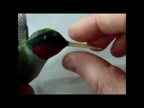 How to make the paper Hummingbird