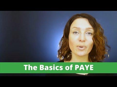 Irish PAYE Guide. The Basics of PAYE.