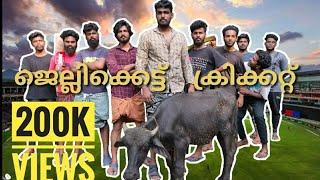 ജെല്ലിക്കെട്ട് ക്രിക്കറ്റ് | jellikkattu cricket |The nostalgic cricket | thekkanmar
