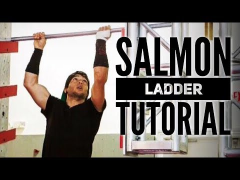 Salmon Ladder Tutorial Ninja Warrior Training