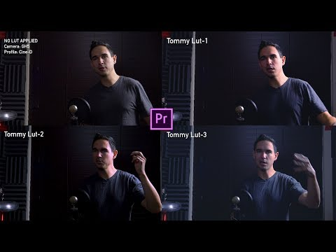 How to make Custom LUTs in Premiere Pro CC 2018