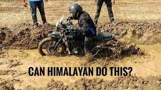 Can Himalayan Do Off Roading ? | Motowingz