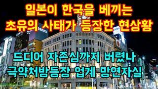 일본이 한국을 베끼는 초유의 사태가 등장한 현상황 드디어 자존심까지 버렸나 극약처방 등장에 업계 망연자실