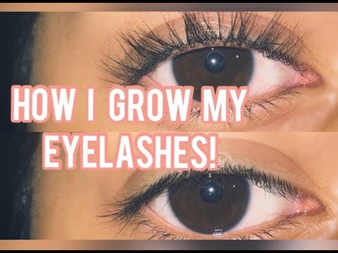 How to Grow your Eyelashes? (Overnight)