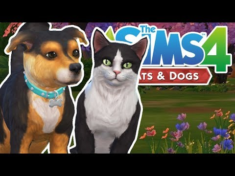 Welcome Dexter & Bella! | The Sims 4 YouTuber Pets | Episode 4