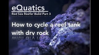 How to Cycle a Reef Tank with Dry Rock - Red Sea Reefer Build Part 3