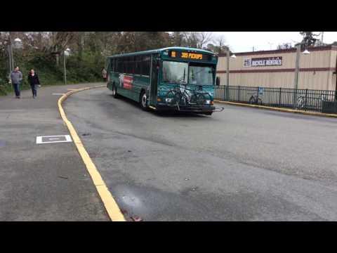 Kitsap Transit buses leaving Bainbridge Island Ferry Terminal