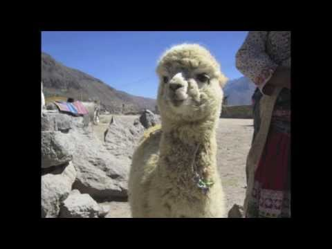 Along the Colca Valley - Maca, Peru