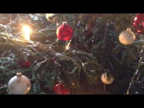 Creepy Rabbit Hijacks Christmas