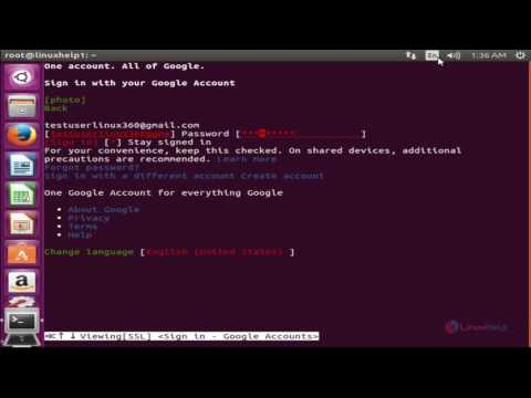 How to access Google in Terminal