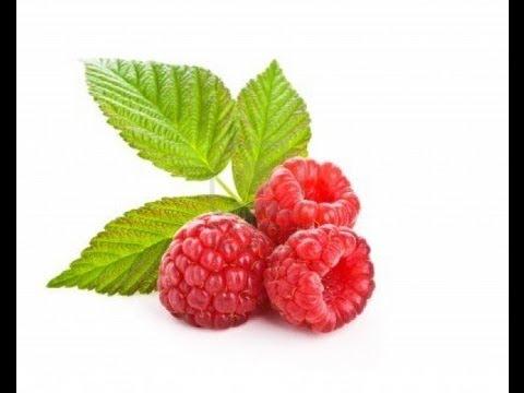 Clone/Propagate Raspberry Vine