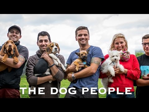 THE DOG PEOPLE - Short dogumentary and an insight into a Dog Daycare in London