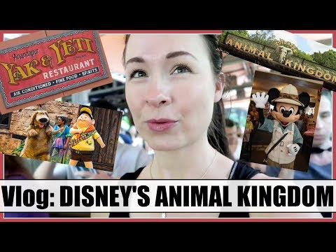 DISNEY VLOG: ANIMAL KINGDOM! Tusker House, New Bird Show & More! | Spring 2018, Day 8