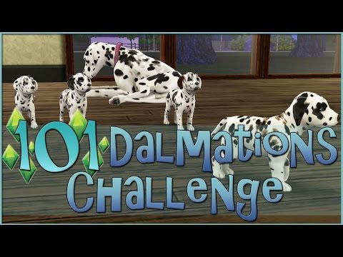 Sims 3 || 101 Dalmatians Challenge: The Puppies Are Born!! - Episode #10